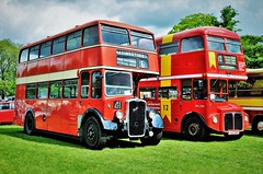 Double Deckers.... (stavioni) Tags: bristol ksw ksw6b jrx823 double decker red bus london transport routemaster aec rml2396 rml 2396 jjd396d