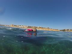 G0107971 (Visit Pilar de la Horadada) Tags: swimmers meeting point hibernismare swim natación nadar milpalmeras pilardelahoradada alicante costablanca vegabaja comunidadvalenciana quedada beach strand swimm