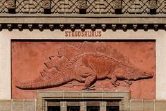 at the zoo (mym) Tags: berlin zoo aquarium dinosaur stegosaurus