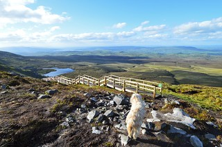 Views from Cuilcagh.