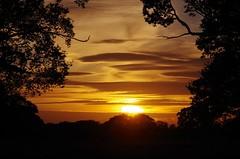 Framed fire (Sundornvic) Tags: shropshire sunset fields countryside colour trees silhouette sky light