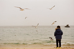 07690015 (_._13) Tags: sea seagul seaonfilm seaview seaside gangneung beach filmphotography filmphoto colorfilm sharefilm 35mmfilm 필름 필름사진 바다 강릉 강릉바다 바닷가 갈매기 плёнка море плёночнаяфотография