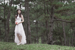 B73A1157 (duongbathong_qtkd) Tags: