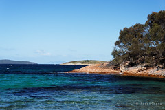 20170414-14-Contrasting colours (Roger T Wong) Tags: 2017 australia freycinet freycinetnationalpark hazardsbeach np nationalpark rogertwong sel2470z sony2470 sonya7ii sonyalpha7ii sonyfe2470mmf4zaosscarlzeissvariotessart sonyilce7m2 tasmania beach bushwalk camp clouds hike ocean outdoors sand sea sky tramp trek walk