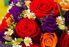 _MG_7968-2 (TobiasW.) Tags: wedding decoration weddingdecoration tischdeko tabledecor tabledecoration blumengöllner hochzeitstisch tischdekoration