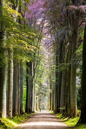 VlaanderenGroeneGordel_BasvanOort-210