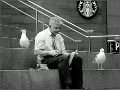Pincer movement (* RICHARD M (Over 6 million views)) Tags: street candid portraits portraiture streetportraits streetportraiture candidportraits candidportraiture gullls seagulls herringgulls mono blackwhite birds chavassepark liverpoolone liverpool merseyside maratimemercantilecity pincermovement outflanked outnumbered twoagainstone lunchbreak alfresco diningout steps stonesteps humour lol uhoh oblivious unaware uninvitedguests eatingout outtolunch chancers opportunists lunch lunchtime surrounded