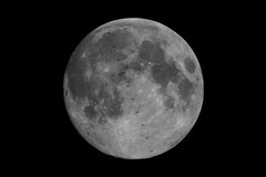 ISS Lunar Transit over Florida (James Boone) Tags: 2017 csa esa europeanspaceagency florida fullmoon fyodoryurchikhin gibbous internationalspacestation iss jackfischer jamesboone jamesboonephoto jaxa lightroom may moon nasasocial nikon oldboone olegvovitskiy peggywhitson plantcity science space spacestation spring tampabay thomaspesquet transit waxinggibbous