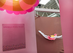 Museum Of Ice Cream - Los Angeles 2017 (evaxebra) Tags: museum ice cream icecream moic museumoficecream art pink installation losangeles la downtown 7th diver neon rules