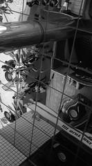 のもなか・1 (Dinasty_Oomae) Tags: leicaiiia leica3a leica ライカ ライカiiia 白黒写真 白黒 monochrome blackandwhite blackwhite bw outdoor 東京都 東京 tokyo 武蔵野市 武蔵野 musashino 吉祥寺 吉祥寺南町 kichijouji mirror 鏡 反射 reflection