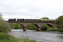 Pannier tanks crossing the River Trent (Andrew Edkins) Tags: burtonbridge 9600 9466 panniertank rivertrent eastmidlandsrambler mainlinesteam railtour uksteam geotagged railwayphotography canon water preserved vintagetrains