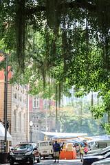 Largo do Machado (Johnny Photofucker) Tags: catete largodomachado riodejaneiro rj praça piazza square árvore tree albero arquitetura architecture architettura lightroom brasil brazil brasile 24105mm verde green feira mercado mercadinho mercato fiera market