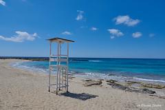Paesaggi di Puglia - Marina di Pulsano  (TA) (NIKOZAR (Nicola Zaratta)) Tags: mare taranto mediterraneo fiori macchiamediterranea puglia italy dune sabbia nikond750 nikkor24120 marjonio marinadipulsano lidosilvana