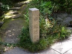 P1004106 (digitalbear) Tags: panasonic lumix gh5 sumida river kiyosumi garden eidai bridge tokyo japan sharehotel lyuro skytree fukagawameshi miyako yakatabune