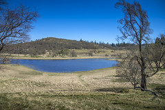 (Enrico Webers) Tags: 2017 scotland ecosse schotland schottland uk unitedkingdom united kingdom roadtrip edinburgh fort william inverness oban mull glasgow