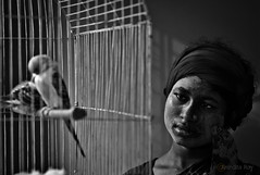 HOPE:::Break The Shackles (RupKotharChobi(www.rupkotharchobi.com)) Tags: girls bird shackles work
