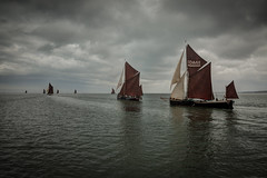Chasing sail (stocks photography.) Tags: whitstable thamesbargematch michaelmarsh photographer stocks photography sea coast sail sailing thamesbarge boats maritime swale