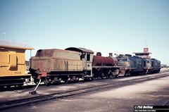 1300 W931  X1030  X1026 Forrestfield Loco Depot 16 August 1980 (RailWA) Tags: railwa philmelling w931 x1030 x1026 westrail forrestfield 1980