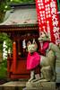 Fujiyoshida, Yamanashi Prefecture, Japan (David Ducoin) Tags: asia boudhism fox japan monk religion shinto shrine temple fujiyoshida yamanashiprefecture jp