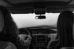 Into the fog (nordanheidar) Tags: iceland driving north fog mist nissan patrol monochrome blacknwhite
