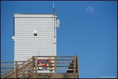 Kite and the moon (HasnMlk) Tags: 300mm usa d750 texas kite beach padreisland