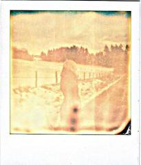 44 (lshdlr) Tags: sepia polaroid winter coat landscape winterlandscape backfie