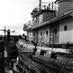 Old Tug Boat at Bremerton Marina (bac1967) Tags: babyrolleiflexbabyrolleiflextlrtwinlensreflexilfordhp5ilfordhp5127film127rollfilm127filmblackandwhiteblackandwhitefilmblackwhitebwbwmonochromemonotoneberrenolberrolpabstblueribbonbeerpabstcaffenolsquareformat wabremertonpugetsoundsinclairinletpacificnorthwestpnw walktheplank rolleiflex babyrolleiflex ilford hp5 ilfordhp5 black white blackandwhite blackwhite bw 127 127film monotone monochrome film tlr twinlensreflex plank walk pirate