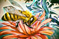 Skin the Sun (Thomas Hawk) Tags: america bayarea california eastbay oakland usa unitedstates unitedstatesofamerica westcoast bee flower graffiti honeybee insect fav10