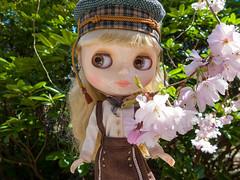 Mint Julep on Hanami (Helena / Funny Bunny) Tags: funnybunny blythe mintjulep mintymagic rbl poupéemécanique hanami botaniskaträdgården botaniska