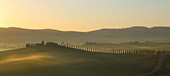 the alley to Poggio Covili (judith.kuhn) Tags: toskana tuscany italien italy reise travel valdorcia poggiocovili allee alley bäume trees zypressen cypresses hügel hill landgut manor sunrise sonnenaufgang morgenlicht morninglight