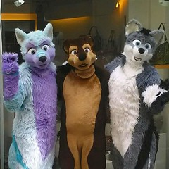 Meeting good old friends ^-^ Together with @arcothewolf and #kairan in #Regensburg #fluffy #otter #wolf (Keenora Fluffball) Tags: keenora fursuit furry kee