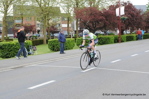 Herman Vanspringels Diamond 2017 (400)