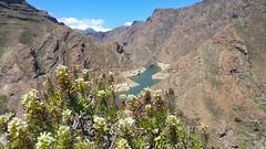Parralillo. Gran Canaria (☮ Montse;-))) Tags: parralillo presa montañas regalito papá grancanaria artenara laaldea barranco riscos