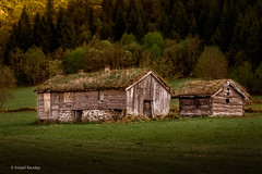 Kviene (Askjell) Tags: bjørke farmhouse kviene mountain mountains møreogromsdal norway scenery sunnmøre volda farm homestead landscape