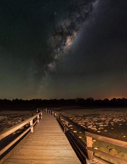 Milky Way Rising Over the Thrombolites - Lake Clifton, Western Australia