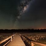 Milky Way Rising Over the Thrombolites - Lake Clifton, Western Australia thumbnail
