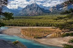Athabasca Beauty (Philip Kuntz) Tags: athabascariver athabascaglacier canadianrockies jasper jaspernationalpark icefieldsparkway alberta canada kerskelingoatlick athabascagoatlick