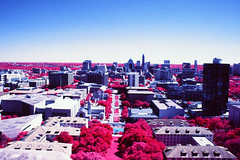 South View from Tower Observation Deck (infobong) Tags: infrared colorinfrared infraredfilm colorinfraredfilm austin utexas