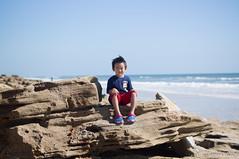 DSC00109.jpg (liangjinjian) Tags: florida marineland palmcoast usa coquinarock geo:lat=2963902639 geo:lon=8119981333 geotagged 美国 travis