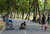 . (arcibald) Tags: bangkok thailand chatuchak rotfai park