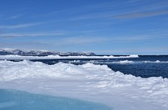 DSC_0134 (JillScoby) Tags: canada nunavut pondinlet byoletisland icefloe floeedge arctic ocean ice snow