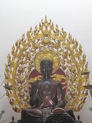 Nha Trang, Vietnam (rylojr1977) Tags: nhatrang city vietnam tourism buddha temple religion statue swastika