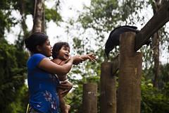 Aldeia Guarani_Foto de AF Rodrigues_3 (AF Rodrigues) Tags: afrodrigues aldeiaguarani guarani paraty rj riodejaneiro brasil bemquerer br programaproíndio uerj aldeiaindígina povodafloresta populaçãotradicional índio indígina foratemer urubu ave criança mãe