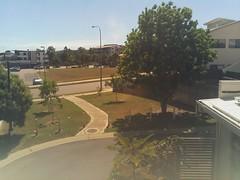 2017-04-28T12:00:04.398051+10:00 (growtreesgrow) Tags: trees timelapse raspberrypi