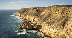 Kalbarri clifs_Western Australia_DSC7879