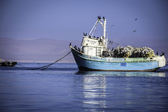 Paracas (David Baggins) Tags: paracas perú pacific océanopacífico nikond7200 d7200 mar boat fishing fisher pescador pesca