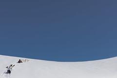 beastly steep (Markus Trienke) Tags: grönland kulusuk kommuneqarfiksermersooq heaven snow mountain dog dogs canon eos 5d mkiv cold winter pirhuk sled dogsledding mushing greenland eastgreenland steep blue white expedition arctic