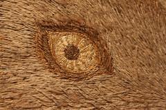 Rabbit's eye (Arkle1) Tags: macromondays eyes embroidery rabbit