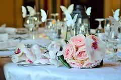 Wiosenny motyw przewodni ślubu (slubipl) Tags: hiacyntoweszaleństwo konwaliowewesele kwiatwiśni kwiatwiśnimotywweselny motywprzewodniprzyjęciaweselnego narcyzowymotywprzewodni pastelowewesele rumiankowewesele wiosennemotywyprzewodnie wiosennemotywyślubne wiosennemotywyweselne wiosennymotywprzewodni wiosennymotywprzewodniślubu wiosennymotywprzewodniwesela