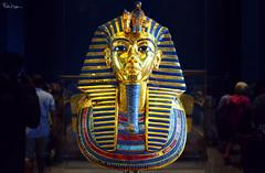 The Mask of all Masks (Karnevil) Tags: africa egypt cairo tutankhamun kingtutankhamun kingtut goldmaskoftutankhamun mask mummymask deathmask funerarymaskoftutankhamun egyptianmuseum museumofegyptianantiquities museumofcairo 1902 bucketlist nikon d610 petekreps